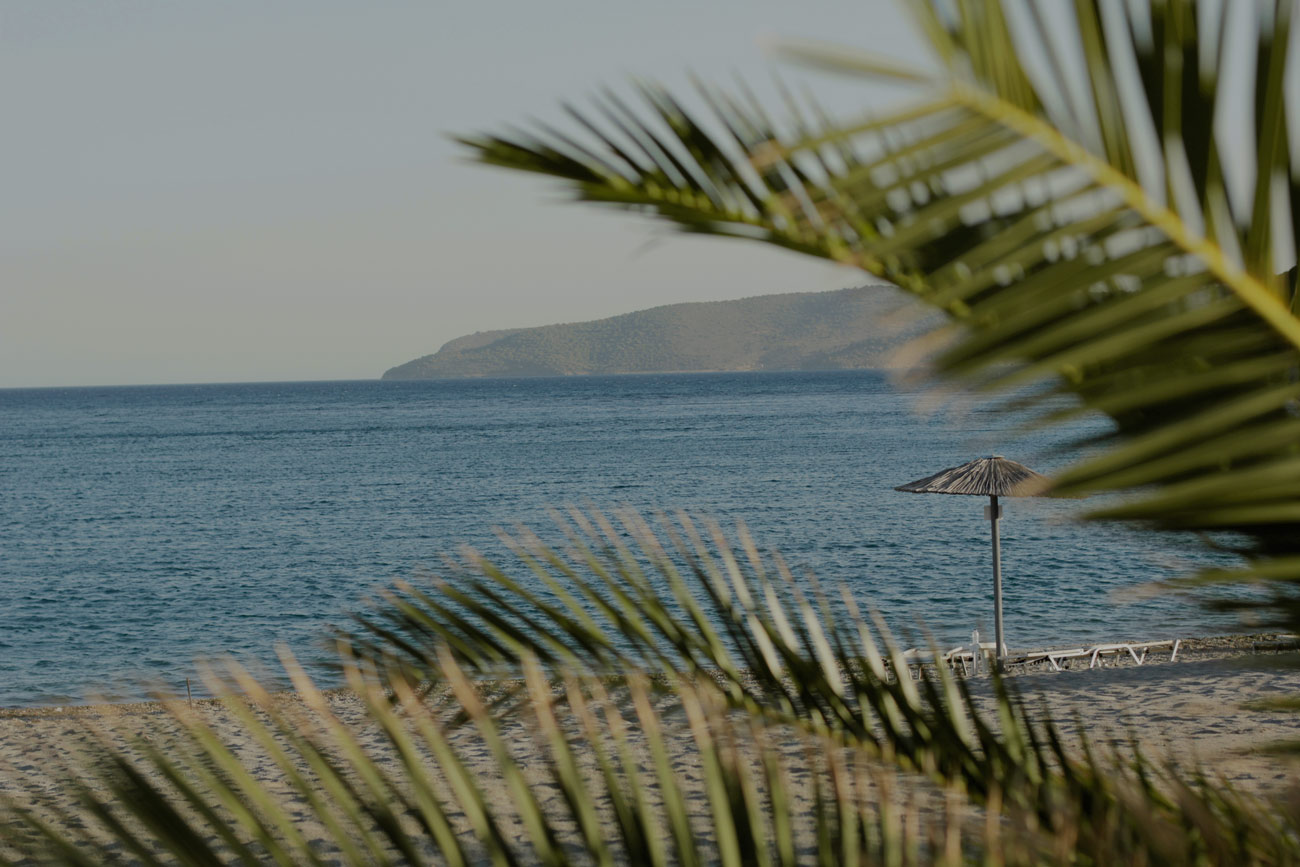 paula-immich-beach-ktima-petalea-palm-trees